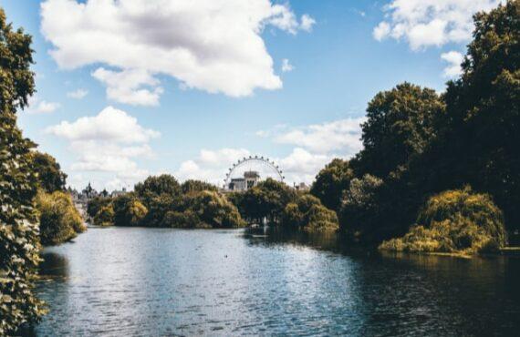 Lockdown London, Walks, Matters Spiritual, And Gorillas